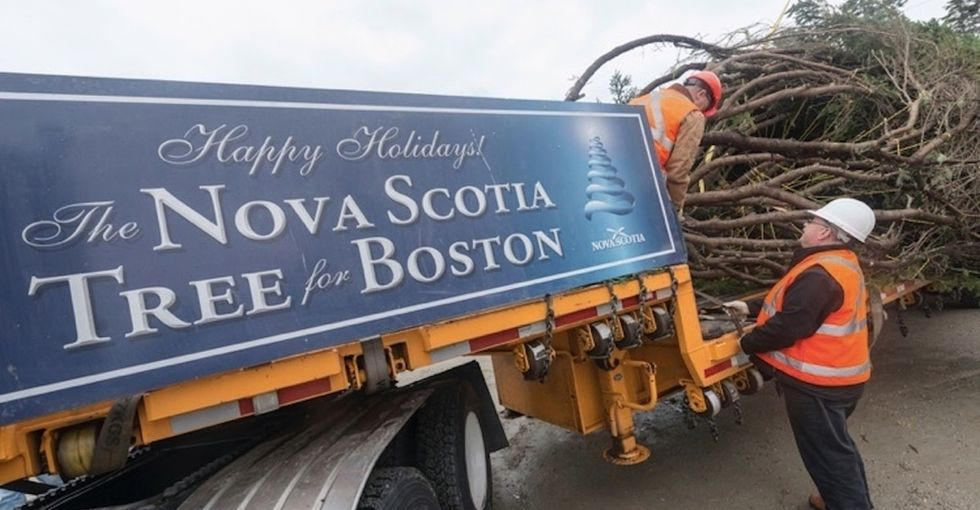 Why Halifax sends Boston an amazing thank-you gift every year.