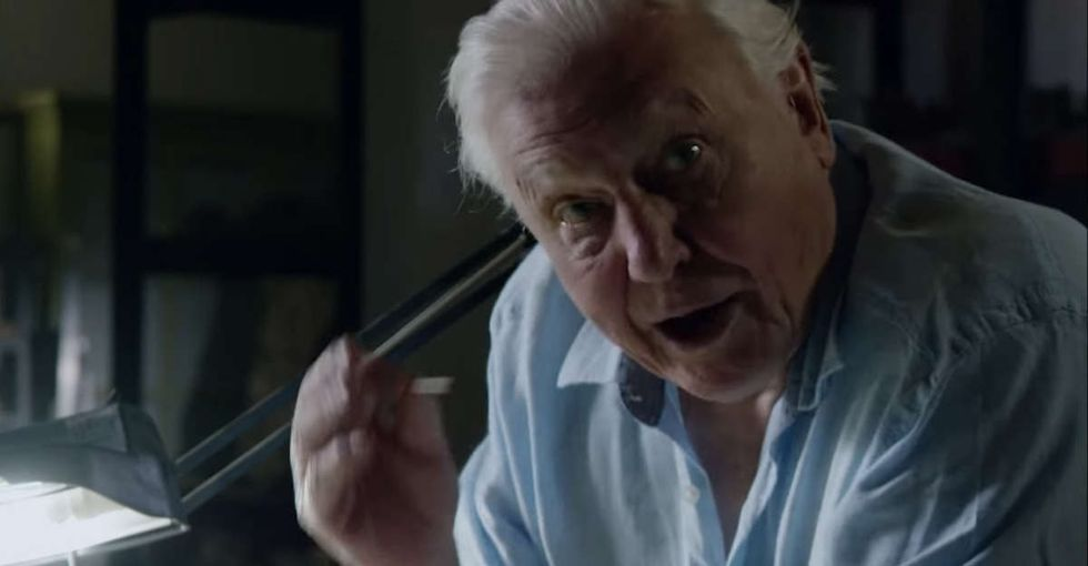 David Attenborough opened up an actual dinosaur egg. Here's what he found.