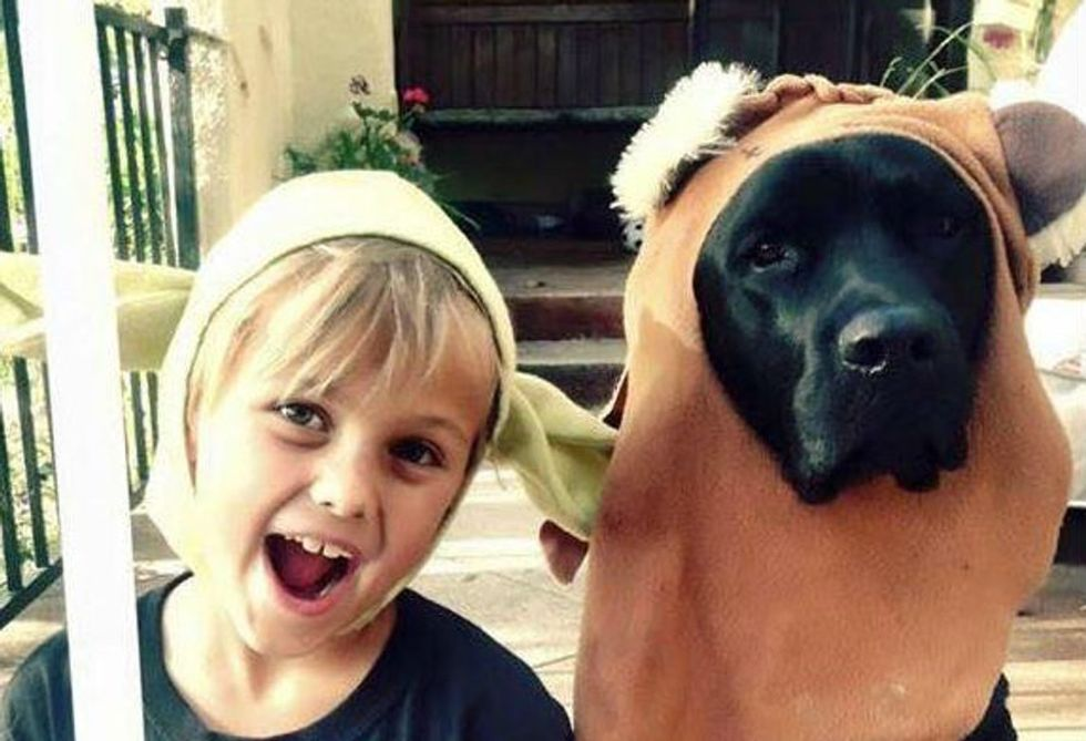 Service dogs are total heroes, and a black lab named Jedi reminds us why.