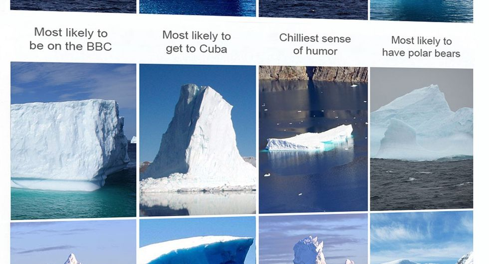 There are so many icebergs, we thought we'd see who's who from this year's class.