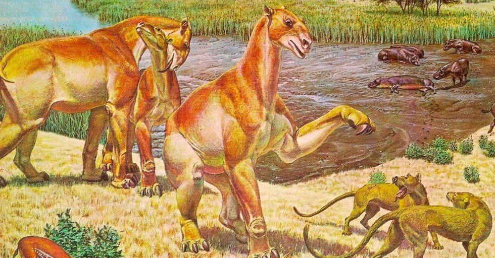 10 ancient beasts your pet might be related to.