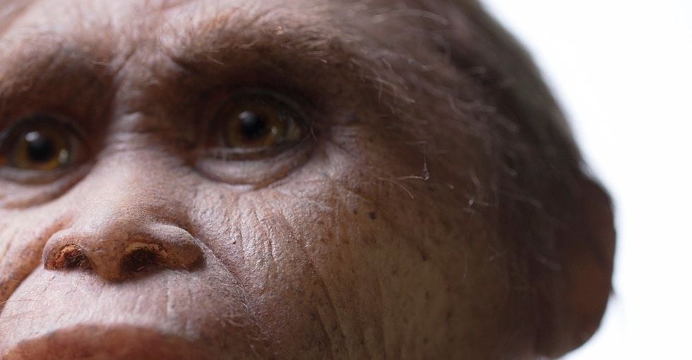 There were real hobbits and they lived on an island full of giants. Here's why.