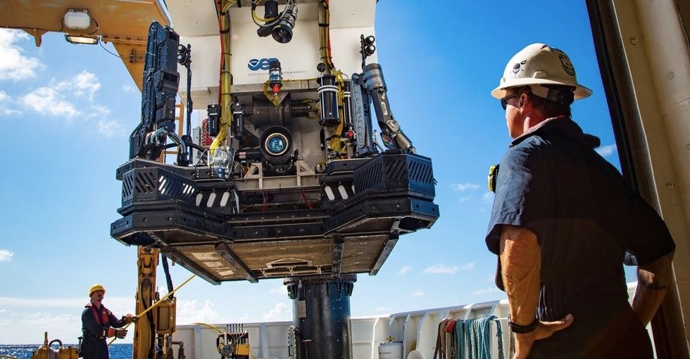 A rover dived to the bottom of the ocean. 15 photos show what it found there.
