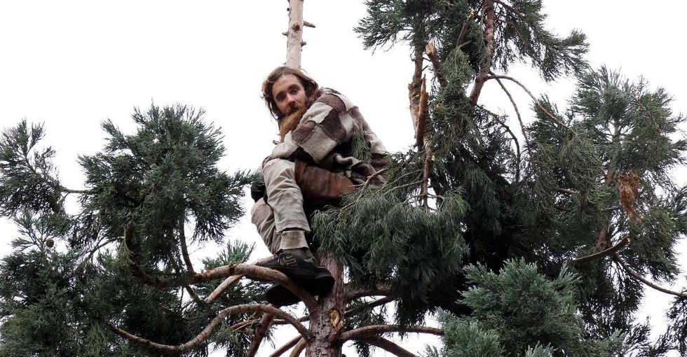 A man in a tree made a whole city laugh. Then his mom spoke out, and the laughing stopped.