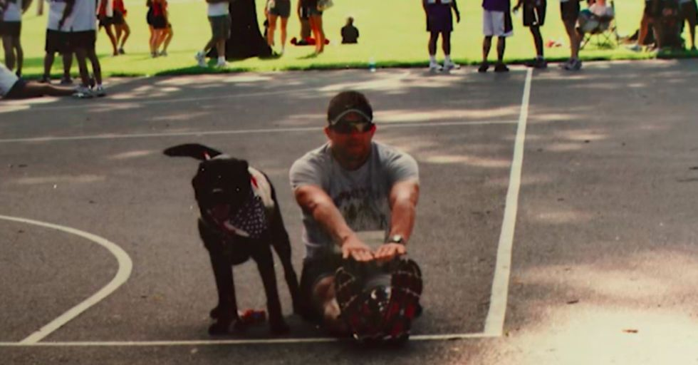 Love dogs? Watch how one pooch went above and beyond for his owner.