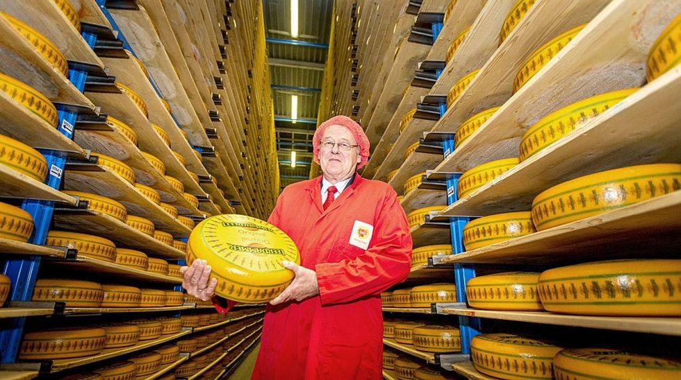 Billions of pounds of cheese are about to go to waste. Clearly America needs your help.