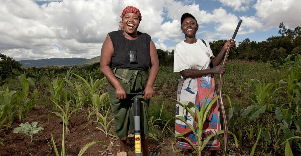 The secret to cutting global hunger rates around the world? Hello, ladies.