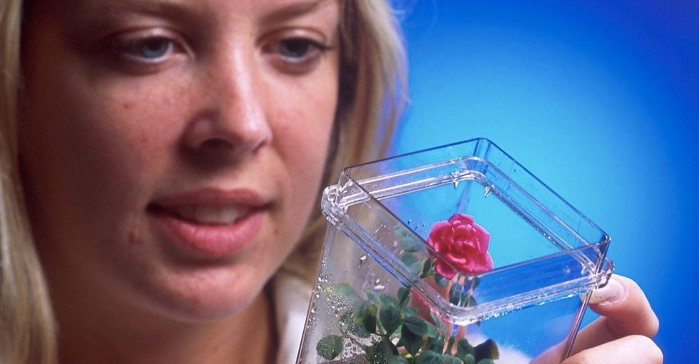 The cool new DIY science movement that's changing everything from animals to agriculture.
