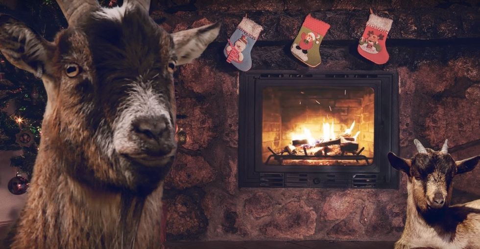This is the Christmas album sung by goats you never knew you needed.