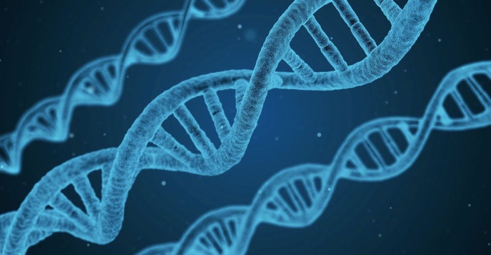 This Huntington's disease trial shows how promising gene editing may be.
