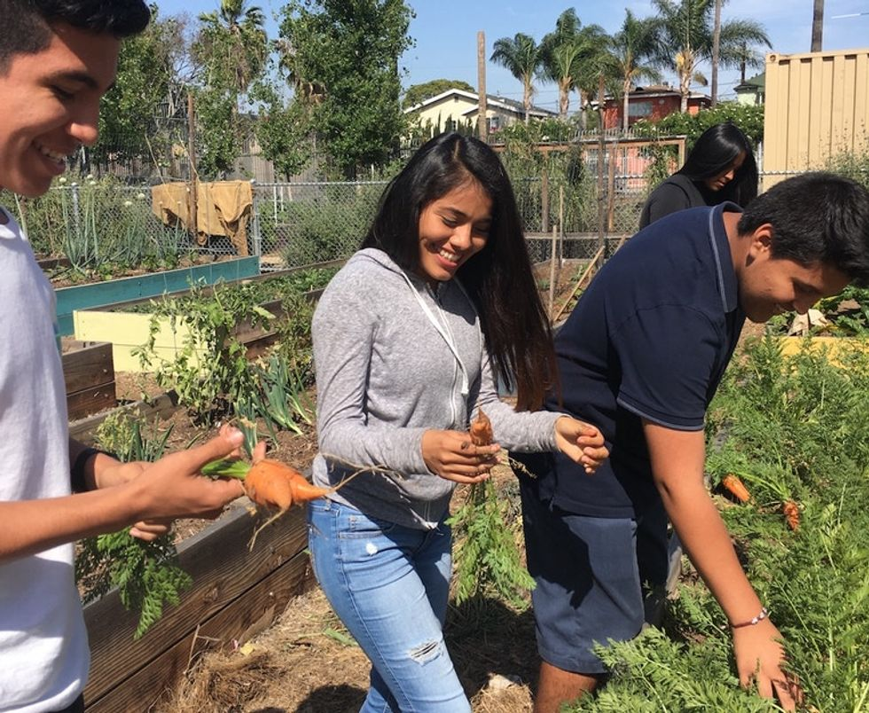 A South L.A. school is paving the way for more green spaces in underserved communities.