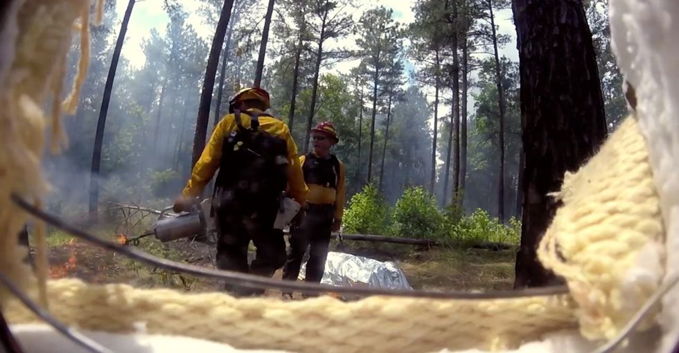 Firefighters are killed every year by wildfires. These scientists want to change that.