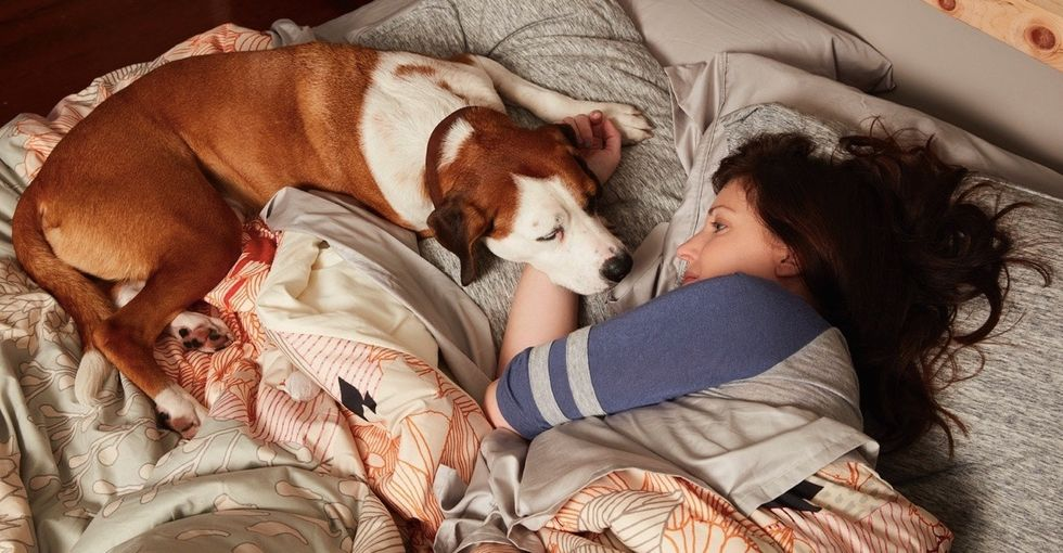 8 powerful lessons about love, life, and self-care from a talking dog on TV.