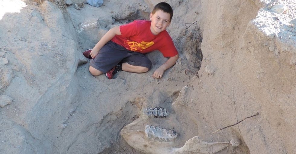 This boy tripped and fell over a fossil. Now this professor wants to display it.