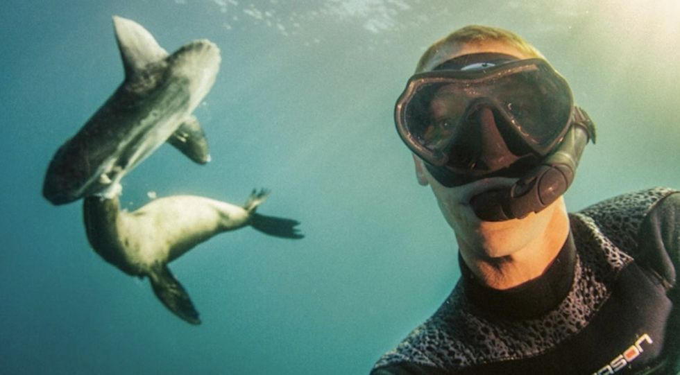 This diver's photos are spectacular. They also make an important statement.