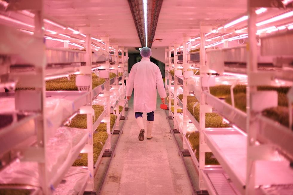 Less waste, more food. These 15 amazing images will make you rethink farming forever.