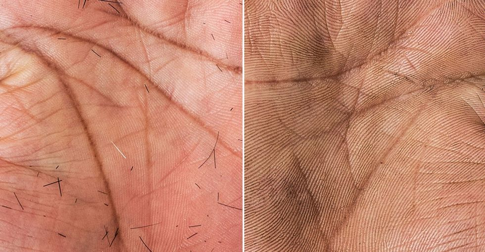 Incredibly detailed photos document the stories our hands tell.
