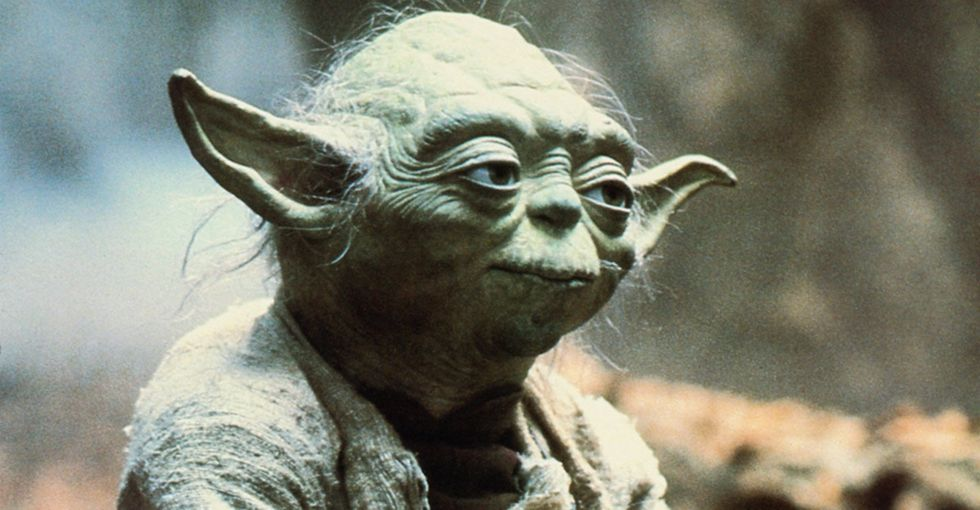 Scientists found 2 new primates, and they look like the best 'Star Wars' character.