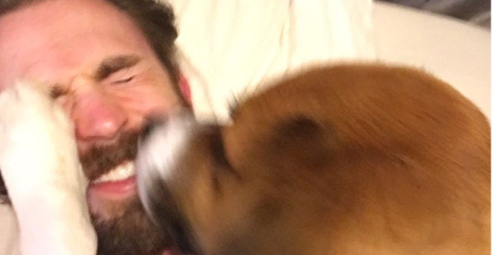Chris Evans posted this video of his dog and nothing on the internet will ever be better.