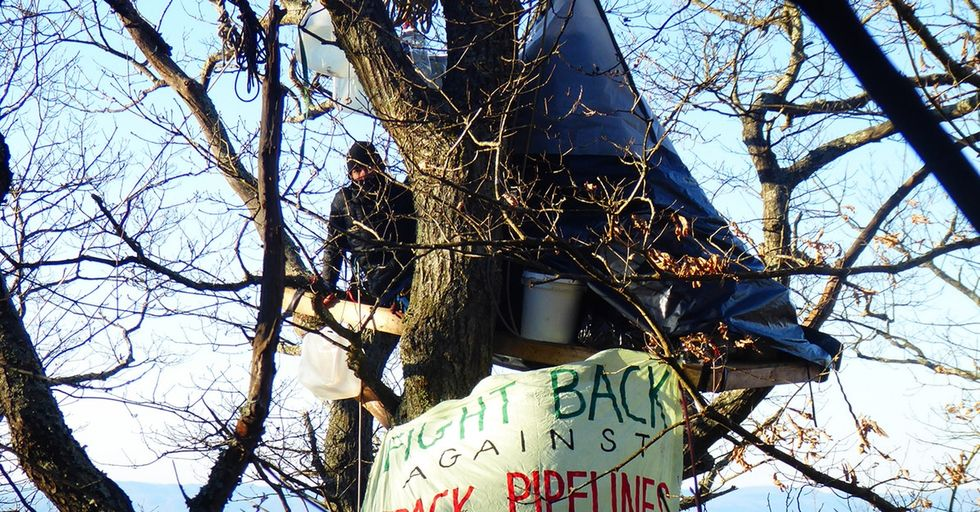 There's been a quiet protest happening in the trees of Appalachia. Now, it's catching on.