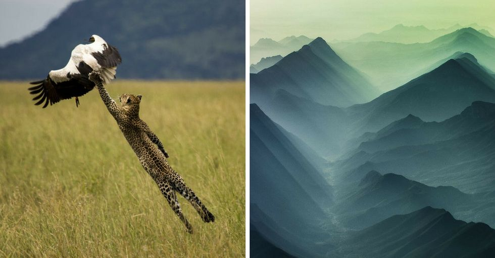 These photos were taken at just the right moment. And the results are stunning.