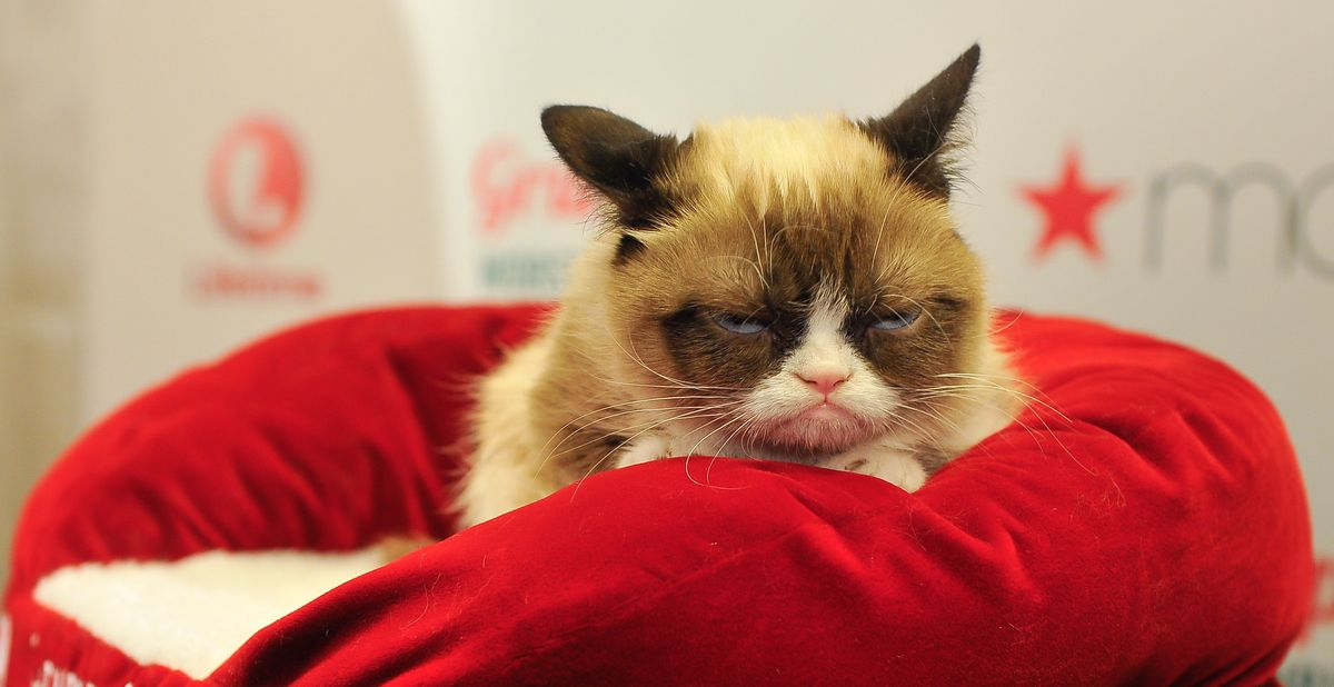 R.I.P Grumpy Cat, A True Anti-Emotional Labor Queen