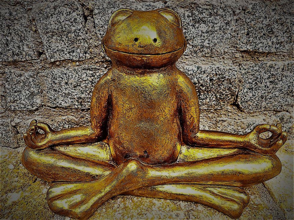 https://pixabay.com/photos/relaxation-meditation-frog-golden-1715385/