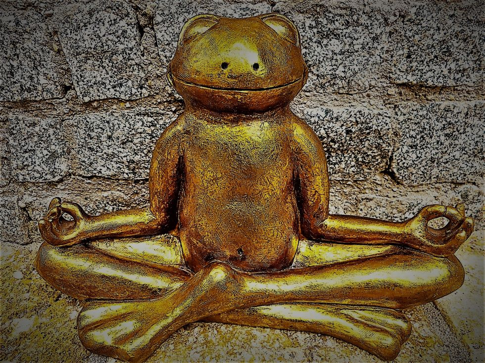 https://pixabay.com/photos/relaxation-meditation-frog-golden-1715385/