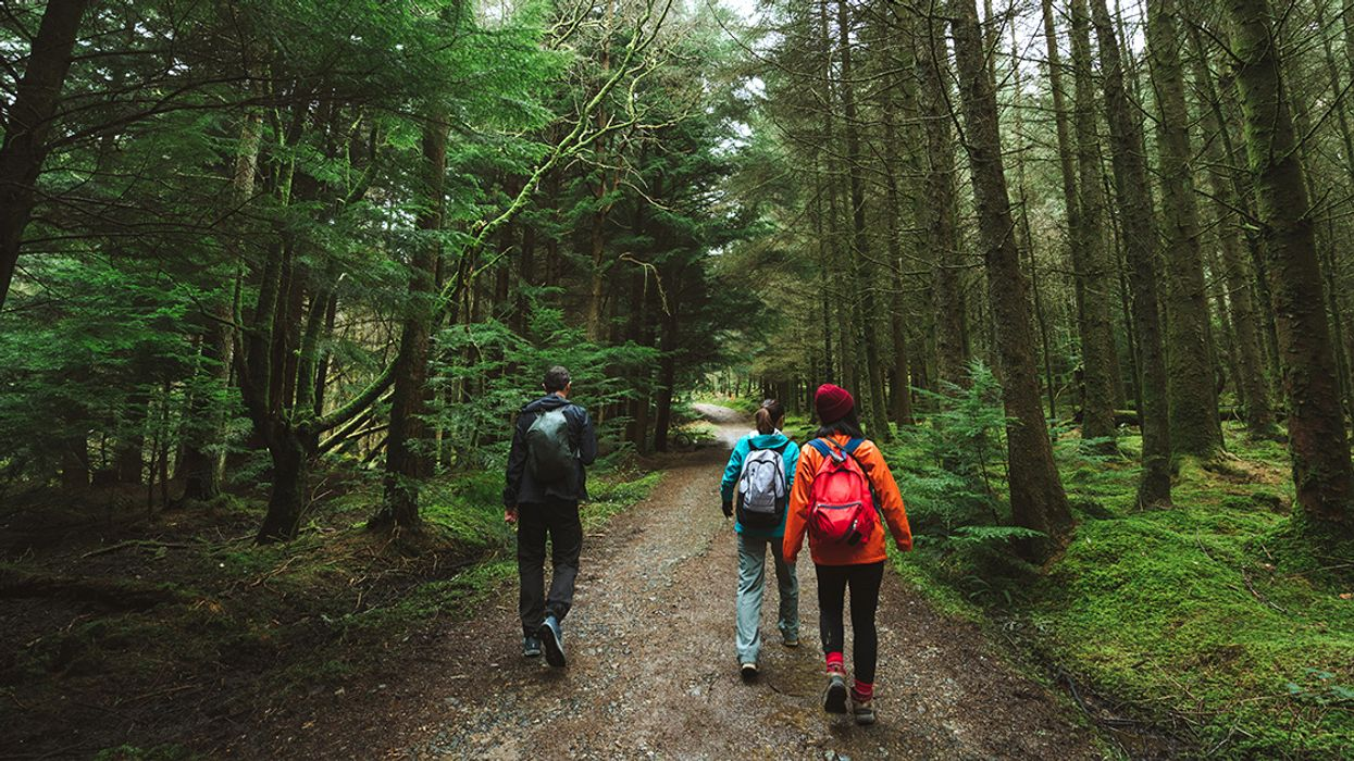 Two Hours a Week in Nature Can Boost Your Health and Well-Being, Research Finds