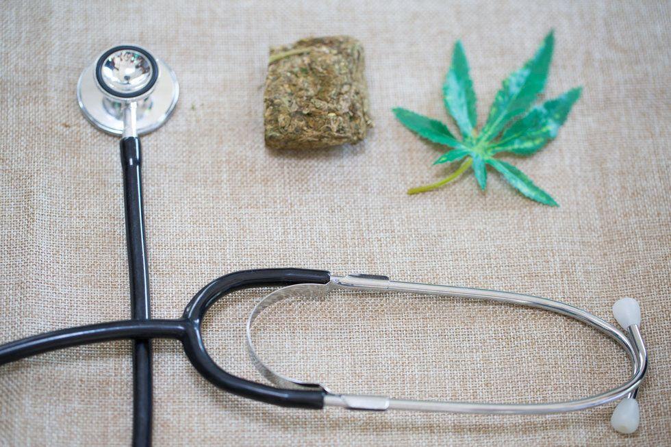 marihuana dieta libro hija bob medicinal