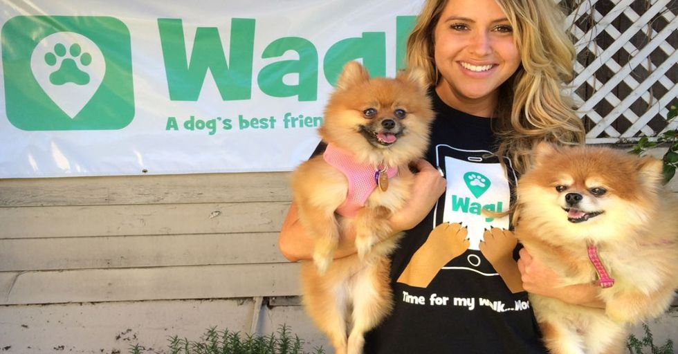 """New """"Uber for Dogs"""" Gives You Dog Walkers on Demand"""