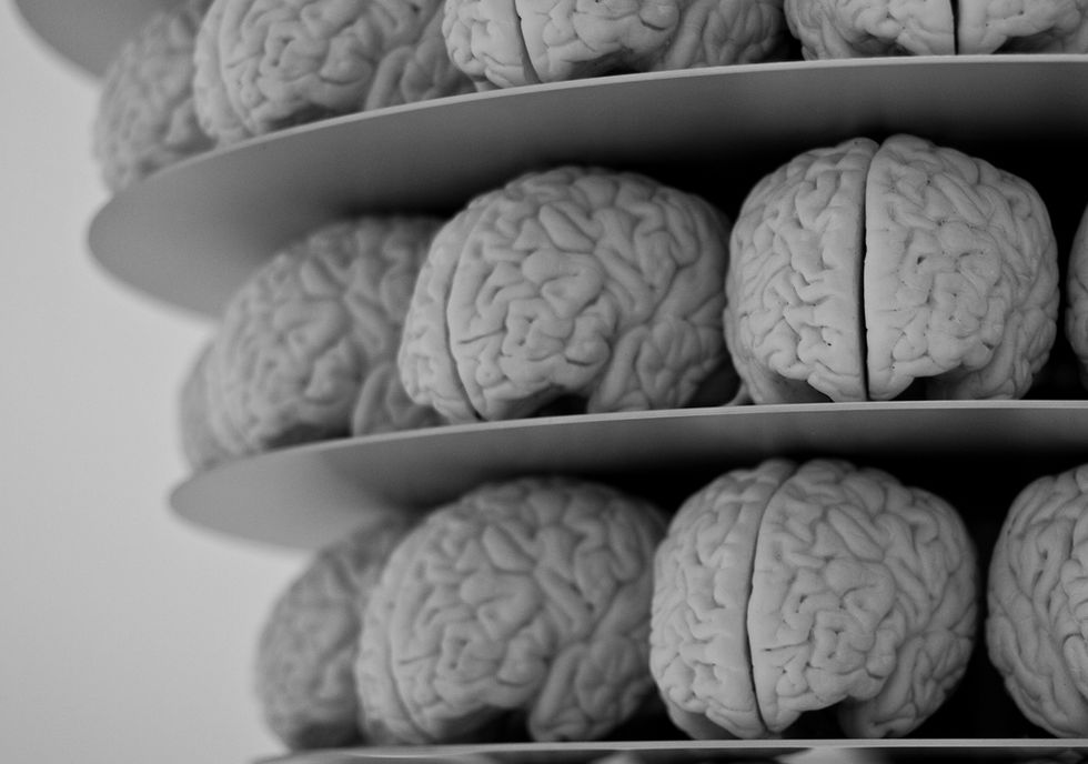 Scientists Grow 3D Mini-Brains to Learn About the Real Thing