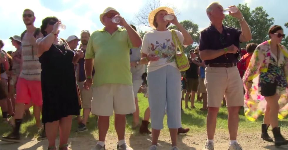 This is What Happens When You Take Four Old People to a Crazy Music Festival