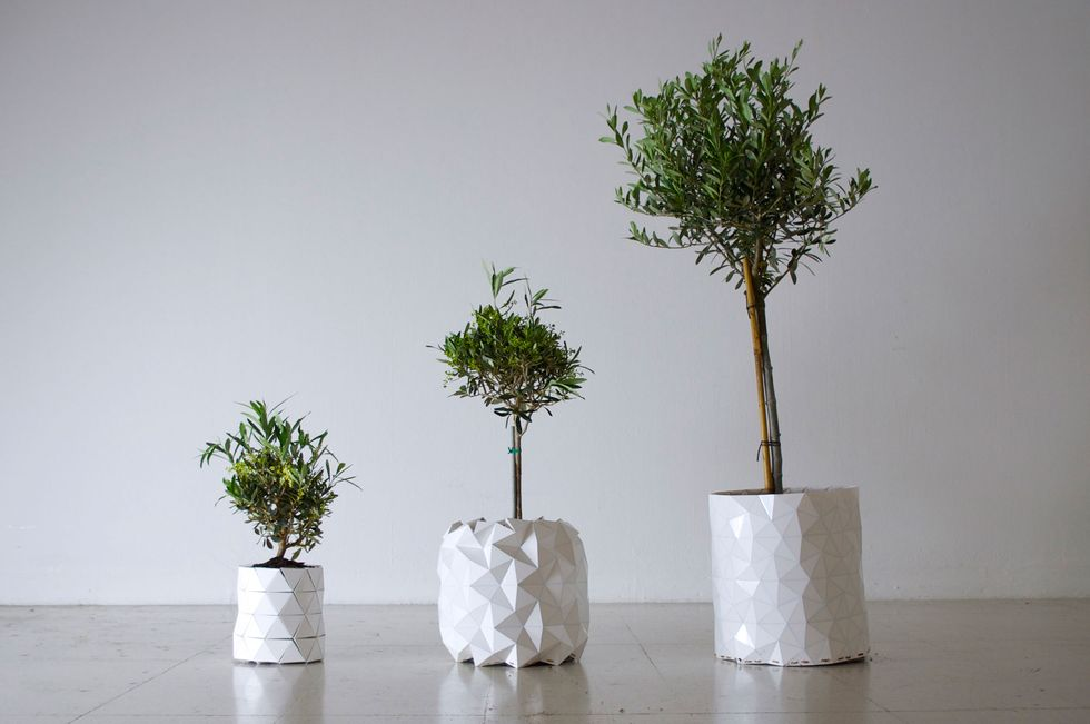 """Expandable """"Origami"""" Pot Grows Along With Plants to Cut Waste"""