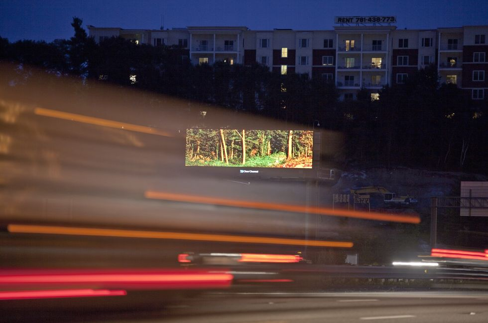 Artist Rents Billboards to Beautify Busy Commutes