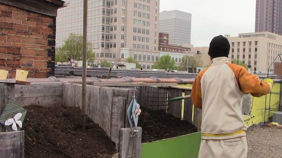 Homeless People Plant a Huge Organic Garden, and Feed an Entire Shelter