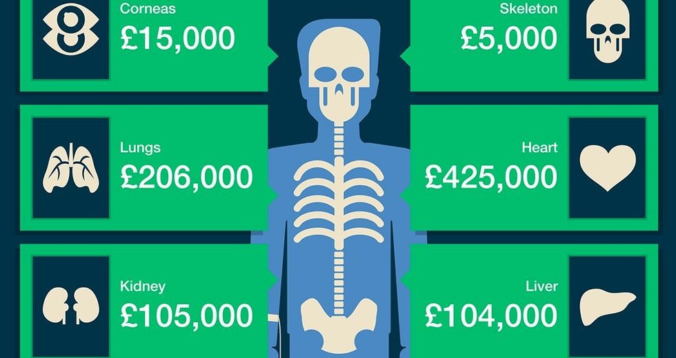 So Here'sExactly How Much is Your Body Worth