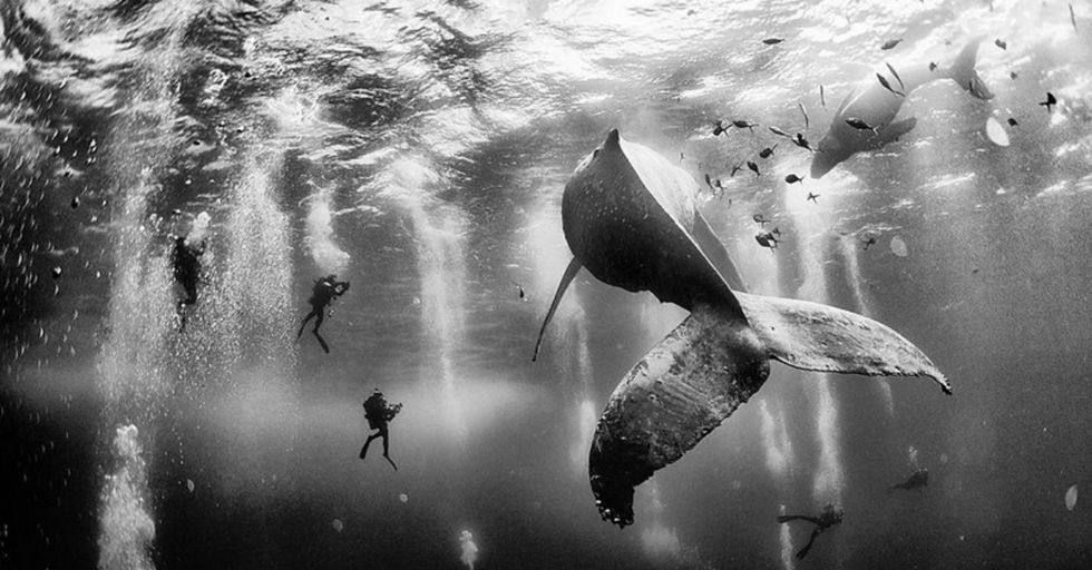 10 Winning Photographs from the 2015 'National Geographic Traveler' Photo Contest
