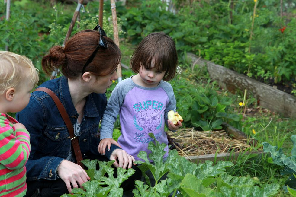 Community Gardens Can Improve Your Mental Health, Study Shows