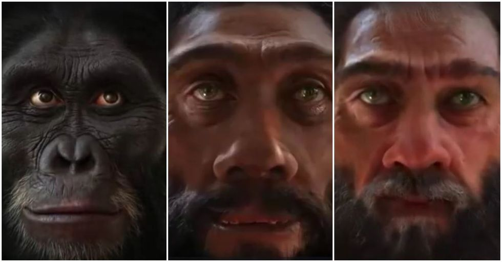New Video Shows 'The Evolution of Man's Face Over Six Million Years'
