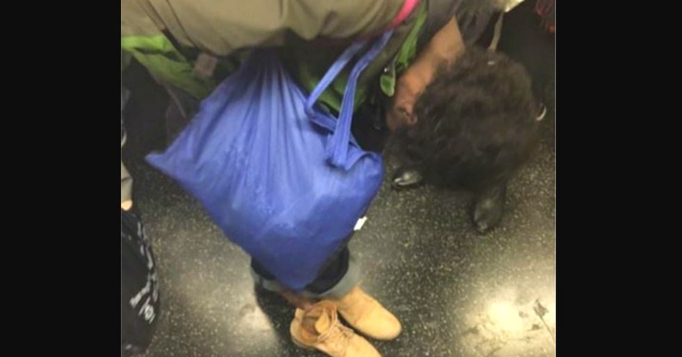 Act of Giving on the New York Subway Kicked Off a Chain of Kindness