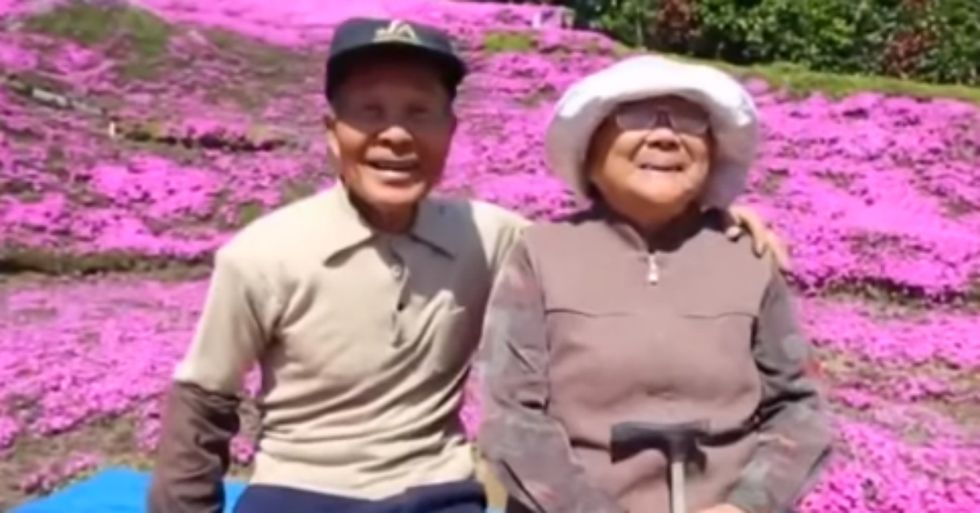 Amazing Husband Planted Thousands of Flowers for His Blind Wife to Smell
