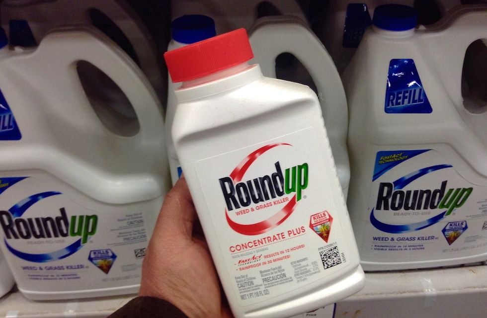 FDA to Test Safety of Foods Sprayed With Glyphosate Herbicides