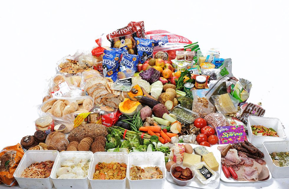 Supermarket Food Waste Programs Are Just the Beginning—Real Change Starts With You