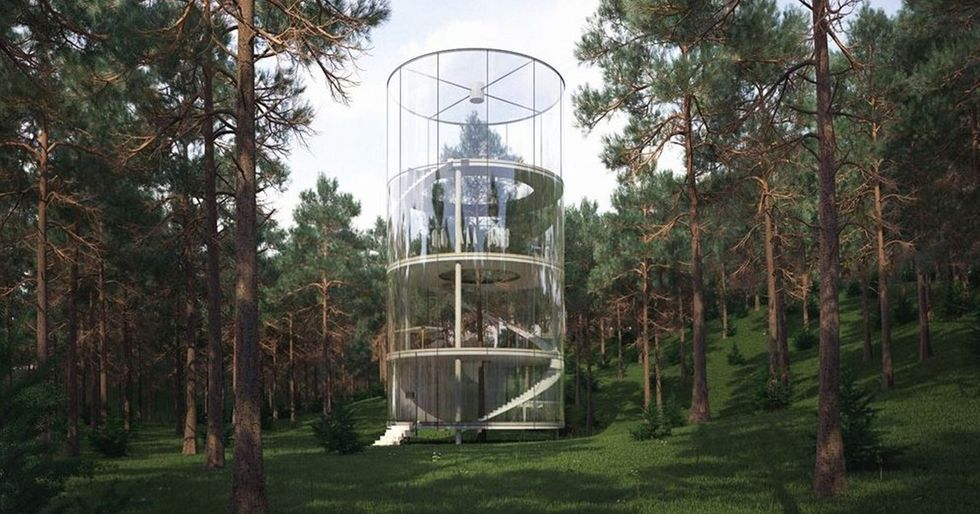 This Tubular Glass House Is Built Around a Tree