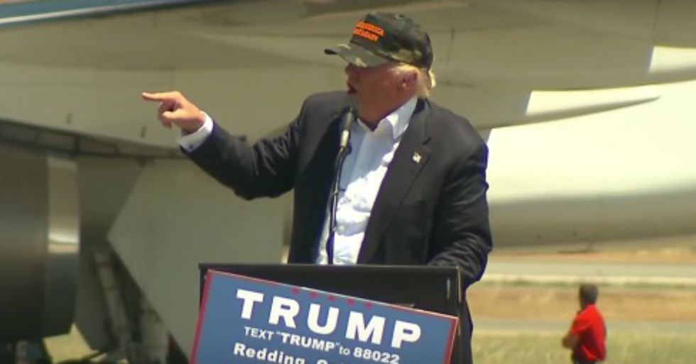 Donald Trump Seriously Just Invited An Entire Crowd To 'Look At My African-American'