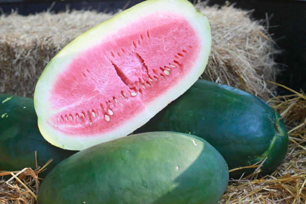 This Watermelon Is So Good, Farmers Used To Guard It With Guns