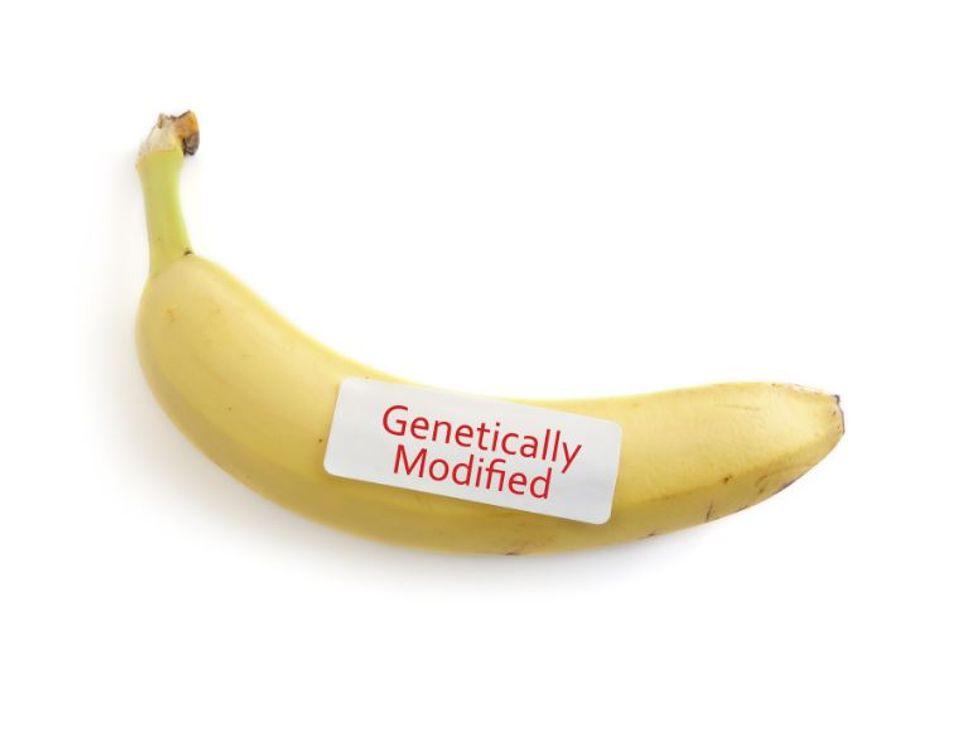 Mandatory GMO Labels Hit Vermont Shelves