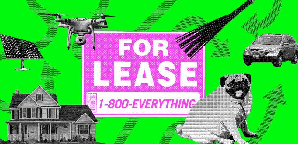 From Dogs to Sex Dungeons, Here Are 4 Unexpected Things You Can Rent (Not Own)