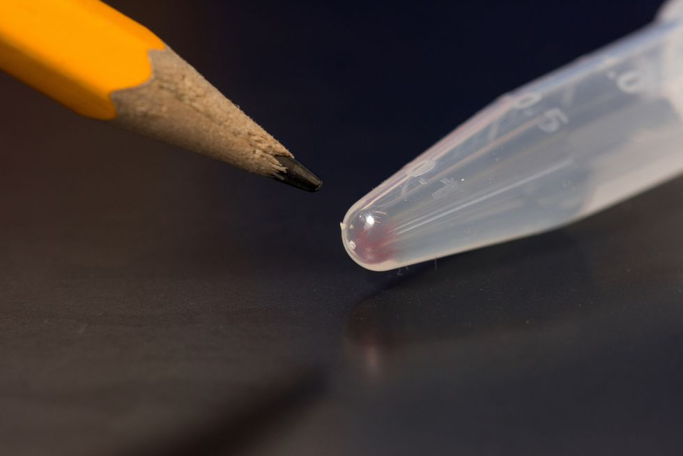 The Thumb Drive Of The Future Is Made Of DNA